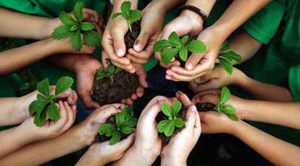 A questão ambiental nós já sabemos que é urgente. Mas como aplicar o conceito de educação ambiental dentro das empresas?